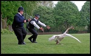 london cops